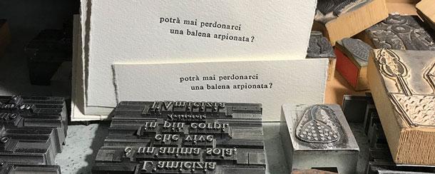 pulcinoelefante_610